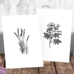 Nyperoser og andre ville blomster - 4 print - valgbar størrelse