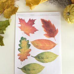Høstløv - print ut og bruk til utallige hobbyprosjekter