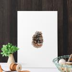 KONGLE - lekker akvarell poster i serien Frost - vinterstemning